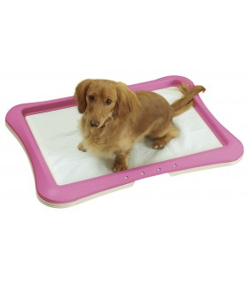 Richell Regular Training Pink Step Tray
