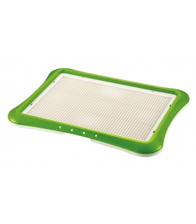 Richell Wide Training Green Step Tray