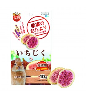 Marukan Freeze Dried Fig 10g