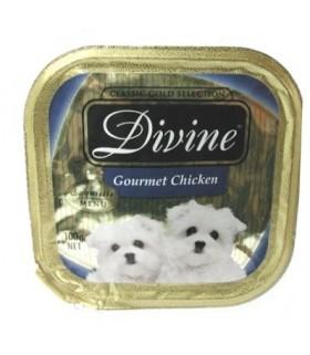 Divine Gourmet Chicken Tray Food 100g X24pieces