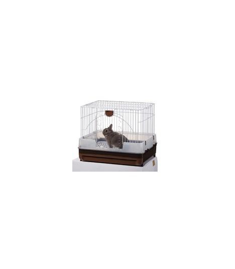 MR309 Rabbit Package B