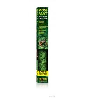 Exo Terra Moss Mat / Terrarium Substrate 30cm x 30cm S