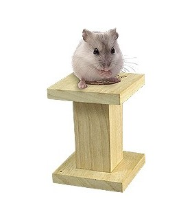 MR265 Biting Wood Stand for Hamster (S)