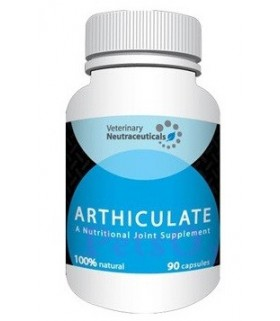 NUT Arthiculate 90tabs