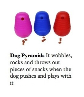 Dog Pyramids (Large)-RED