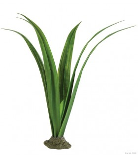 Exo Terra Pandanus - Smart Plant / Gecko Plant