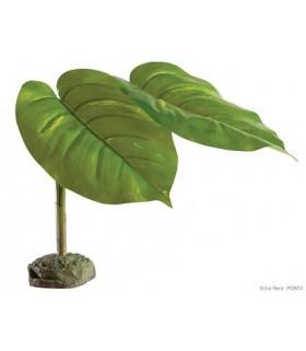 PT2973 Tree Frog Plant