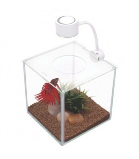 Hagen Fluval Marina Cubus Glass Betta Kit 3