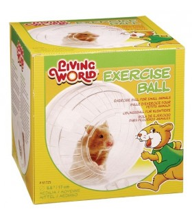 Hagen Living World Exercise Ball with Stand Medium
