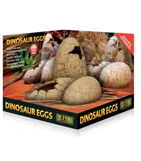 Exo Terra Dinosaur Egg Fossil Hide Out