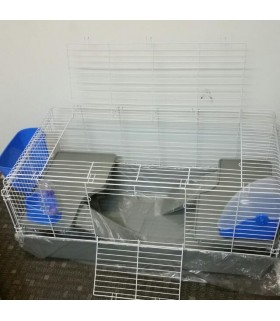 wild sanko easy home next to rabbit cage moomoopets sg