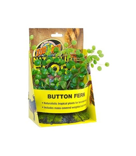 Zoo Med Naturalistic Flora Button Fern MOOMOOPETS SG