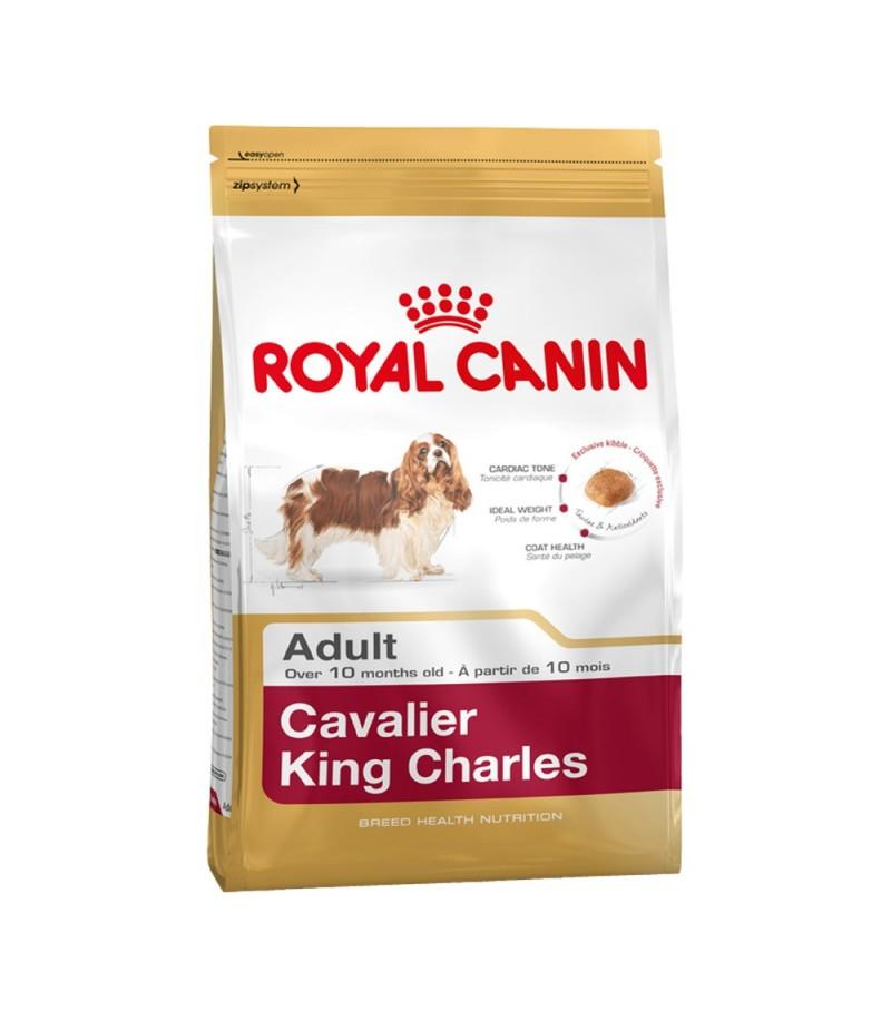 Best Dry Dog Food For Cavalier King Charles Spaniel