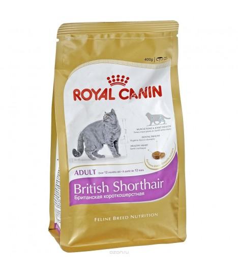 royal canin british shorthair adult moomoopets sg. Black Bedroom Furniture Sets. Home Design Ideas