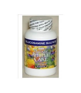 Azmira Dairy & Egg Protein Powder