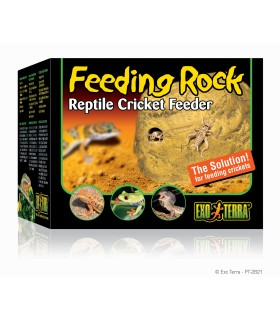 Exo Terra Feeding Rock / Reptile Cricket Feeder
