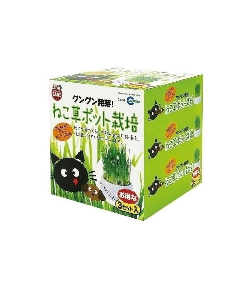 Chlorophyll In Cat Food