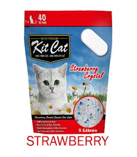 Kit Cat Strawberry Crystal Cat Litter