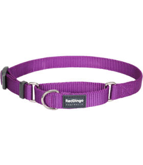Red Dingo Martingale 20mm Half Check Collars