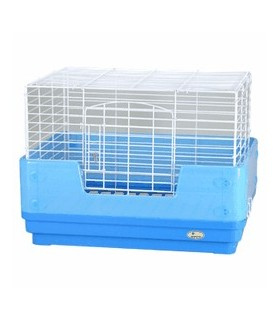 WD462 Wild Simple Cage Blue/Pink