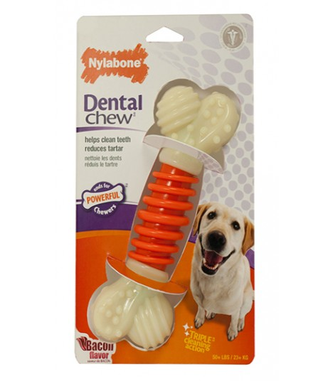 Nylabone - PRO Action Dental Chew Bacon (Medium)