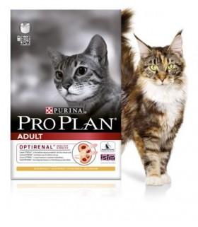 Pro Plan Opti-Renal Adult Cat Salmon
