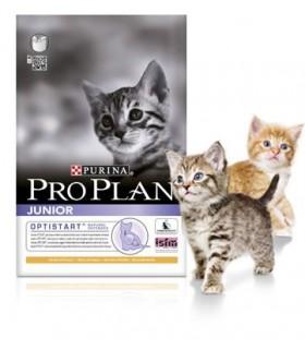 Pro Plan Opti-Start Junior & Kitten