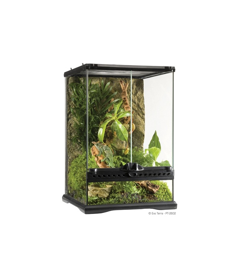 exo terra terrarium mini. Black Bedroom Furniture Sets. Home Design Ideas