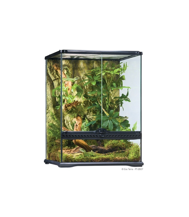 exo terra terrarium small. Black Bedroom Furniture Sets. Home Design Ideas