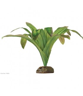 Exo Terra Bromelia - Smart Plant / Dart Frog Plant L