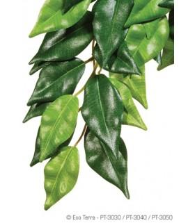 Exo Terra Silk Plant Ficus (Hanging)