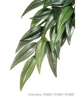 Exo Terra Silk Plant Ruscus (Hanging)