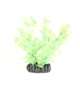 Nisso Luminous Night Plant