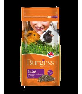 Burgess Excel Blackcurrent & Oregano for Guinea Pig 2kg