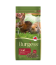 Burgess Excel Rabbit Mature Cranberry & Ginseng 2kg