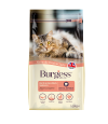 Burgess Excel Adult Cat Scottish Salmon 1.5kg