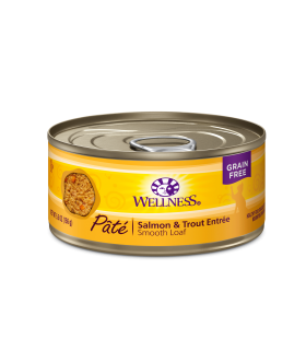 Wellness Complete Health Grain Free Pate - Salmon & Trout for Cat 5.5oz