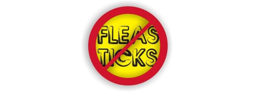 Fleas, Ticks, Dewormer